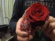 Ruža so srdiečkom