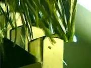 Umelý trávnik - Ako sa robi umelý trávnik