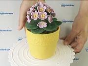 Torta v tvare kvetináča - ako vyrobiť tortu v tvare kvetináča