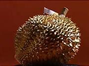 Exotické ovocie - ako konzumovať Durian