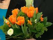 Aranžovanie tulipánov