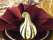 Obrúsok v tvare moriaka - ako poskladať obrúsok - skladanie obrúskov