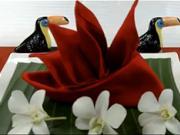 Obrúsok v tvare kvetu - ako poskladať  obrúsok do tvaru kvetu Rajka