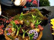 Košíček z narcisov - Jarný aranžmán