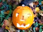 Ako vyrezať tekvicu na Halloween