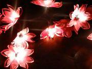Svietiace kvety z papiera - papierove svetlá