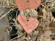 Valentýnské srdíčka