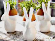 Bylinková dekorácia z vajíčkových škrupiniek