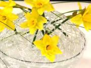 Kvetinová dekorácia - jarná dekoracia z narcisov