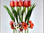 Jarná tulipánová dekoracia - Kvetinová dekorácia