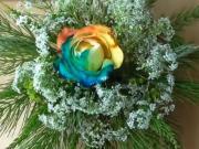 Farbená ružička