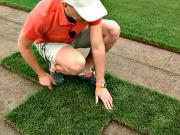 Zakladanie trávnika - ako položiť trávny koberec - starostlivosť o trávny koberec