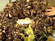 Ružičky z listov - veniec z listov