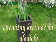 Drenážny kvetináč na gladioly