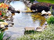 Záhradné jazierko - ako postaviť záhradné jazierko