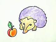 Ježek - jak se kreslí ježek