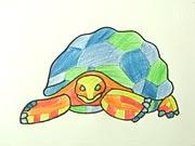 Korytnačka - ako sa kreslí korytnačka, ako nakresliť korytnačku