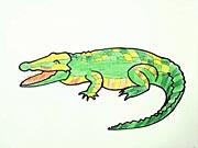 Krokodýl - ako sa kreslí krokodýl