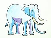 Sloník - ako sa kreslí slon