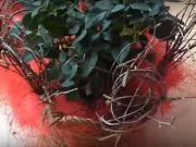 Valentínska ikebana
