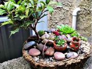 Záhradné dekorácie zo skál a kameňov