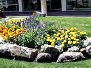 45 záhradných nápadov - kvetinové a záhradné kreatívne nápady