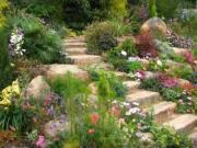Zaujímavé záhradné návrhy - Nápady do záhrady