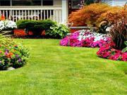 50 záhradných nápadov - ako si navrhnúť záhradu