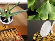 Čo jesť a čo nie pri warfaríne