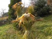 Anjeli z trávy