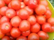 Zaváranie paradajok - 3 recepty