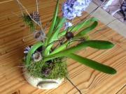 Dekorácia s hyacintom