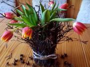 Jarná váza z brezy