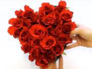 Kytica na Valentína