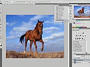 Zmena veľkosti fotografie - Photoshop