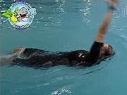Plávanie znak - Ako naučiť dieťa plávať  znak  - plávanie na chrbte